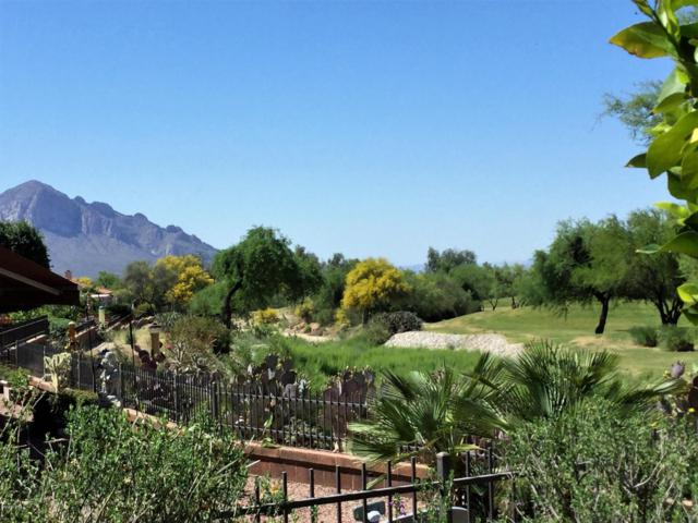 14329 N Silkwind Way, Oro Valley, AZ 85755 (#21828160) :: Stratton Group