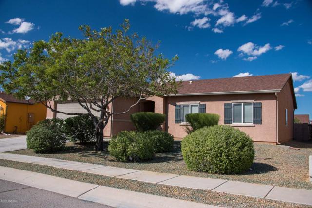 8438 W Shearwater Drive, Tucson, AZ 85757 (#21828301) :: Realty Executives Tucson Elite
