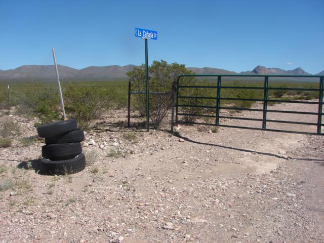 TBD N Desert Retreat Road #62, Douglas, AZ 85607 (#21828336) :: Long Realty Company
