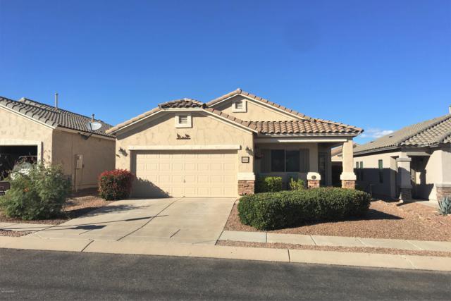 1378 W Calle Luis Maria, Sahuarita, AZ 85629 (#21828408) :: Realty Executives Tucson Elite
