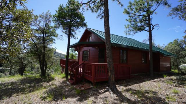 9859 N Willow Canyon Road #59, Mt. Lemmon, AZ 85619 (#21828466) :: Long Realty Company