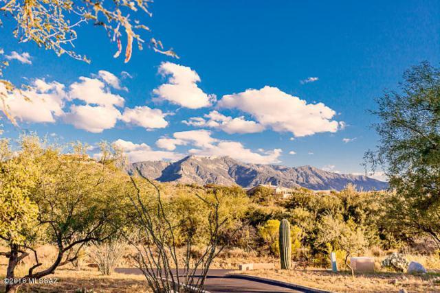 0 E Calle Rosa Linda, Saddlebrooke, AZ 85739 (#21828473) :: Gateway Partners at Realty Executives Tucson Elite