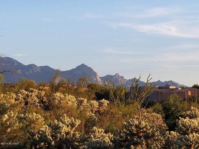 1088 E Josephine Saddle Place #205, Green Valley, AZ 85614 (#21828890) :: The Local Real Estate Group | Realty Executives