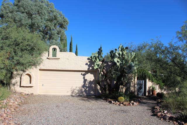 4 Boquillas Court, Tubac, AZ 85646 (#21828936) :: Long Realty Company