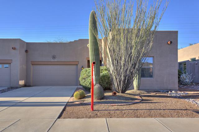 1005 W Blue Fox Road, Green Valley, AZ 85614 (#21828983) :: Long Realty Company