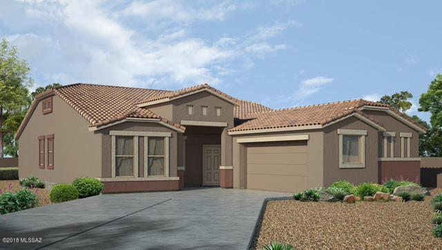9141 W Silver Cholla Drive, Marana, AZ 85653 (#21828996) :: Long Realty Company