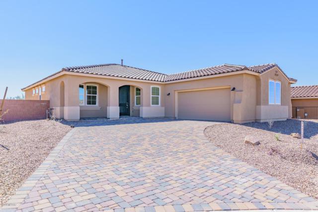 7195 W Secret Bluff Ps Pass W, Marana, AZ 85658 (#21829012) :: Long Realty Company