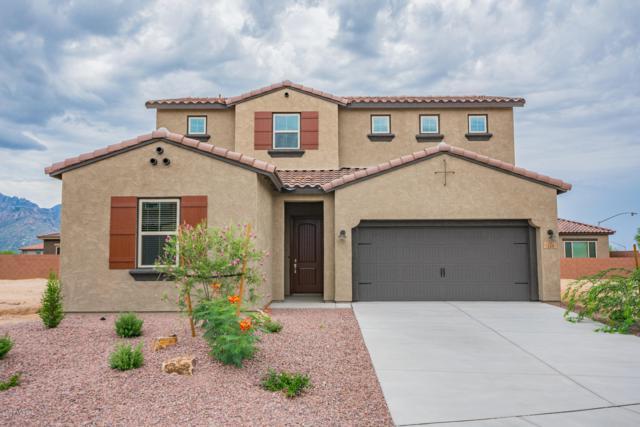 168 E Woolystar Court, Oro Valley, AZ 85755 (#21829134) :: Long Realty Company