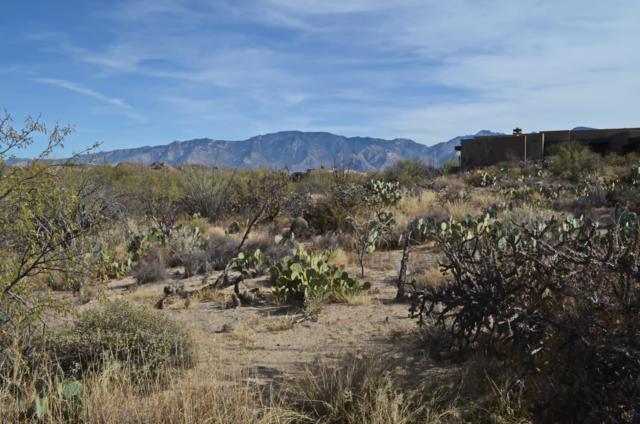 1079 W Tortolita Mountain Ci Circle W #170, Tucson, AZ 85755 (#21829146) :: Long Realty Company