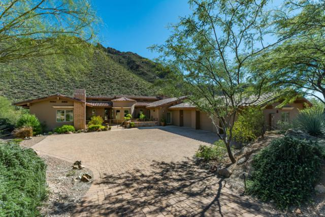 14842 N Dove Canyon Pass, Marana, AZ 85658 (#21829171) :: The Josh Berkley Team