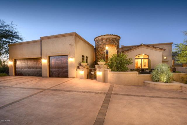 12798 N Sorrel Stallion Place, Marana, AZ 85658 (#21829214) :: Long Realty Company
