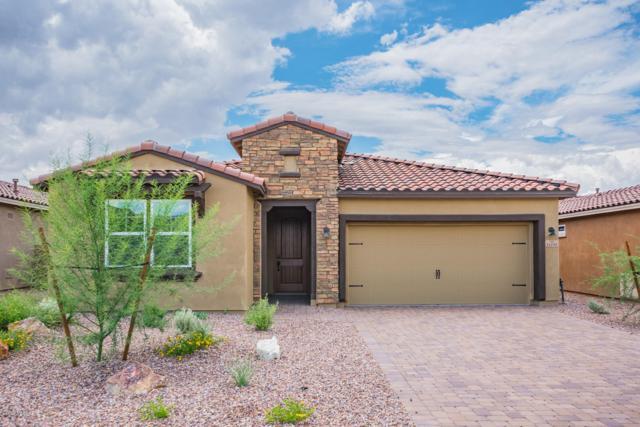 14105 N Silverleaf Lane, Marana, AZ 85658 (#21829270) :: Long Realty Company