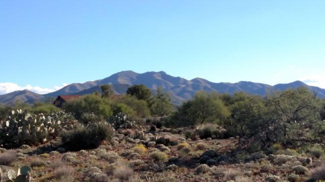 2640 E Lomas Drive #5, Vail, AZ 85641 (#21829313) :: Long Realty Company