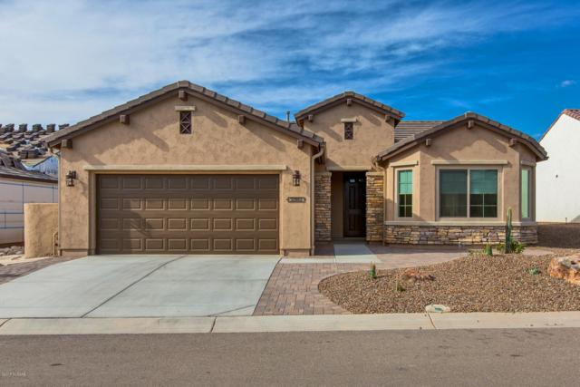 32952 S Egret Trail, Oracle, AZ 85623 (#21829335) :: The Local Real Estate Group | Realty Executives