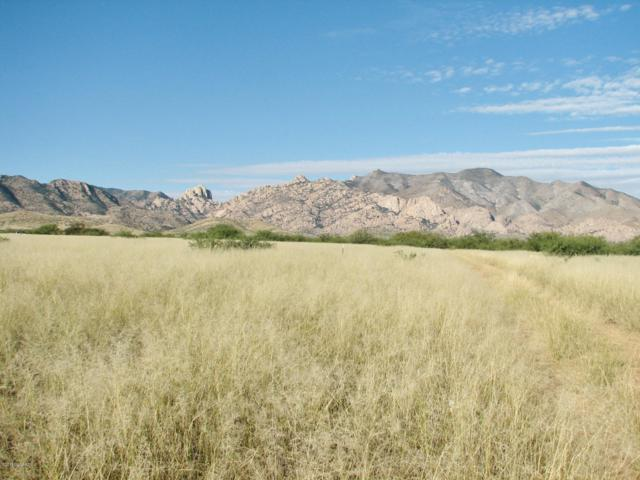 3.36 Acres W Euclid Street #2, Pearce, AZ 85625 (#21829387) :: Long Realty - The Vallee Gold Team