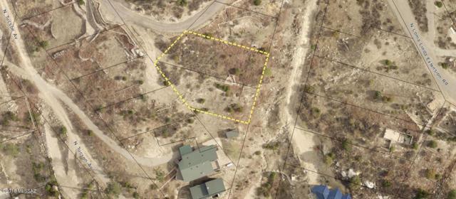 12931 N Gila Avenue N #5, Mt. Lemmon, AZ 85619 (#21829395) :: Long Realty Company