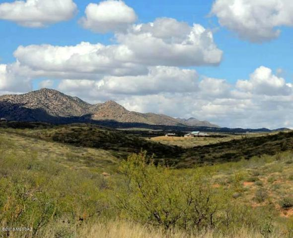 77 Acre On Rambling Road #100, Elfrida, AZ 85610 (#21829817) :: Long Realty Company