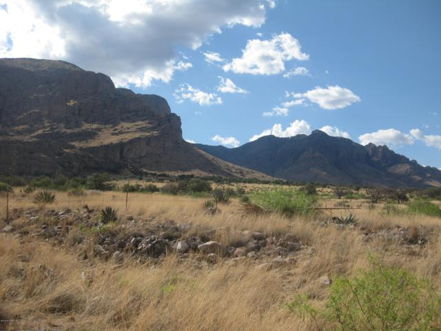 Owl Butte Trail #43, Portal, AZ 85632 (#21829823) :: Long Realty Company
