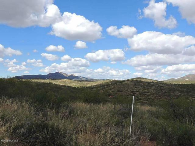 38 +/- Acre On Rambling Road #99, Elfrida, AZ 85610 (MLS #21829883) :: The Property Partners at eXp Realty