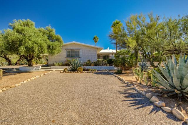 7200 N Leonardo Da Vinci Way, Tucson, AZ 85704 (#21829901) :: Gateway Partners at Realty Executives Tucson Elite