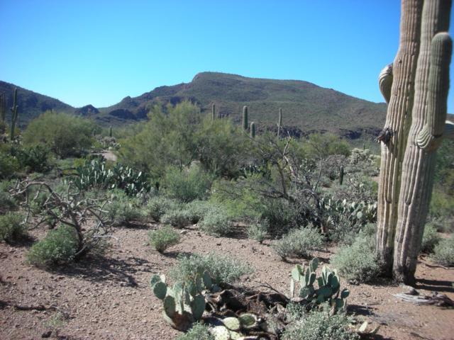 7490 W Ina Road, Tucson, AZ 85743 (#21830063) :: Long Realty Company