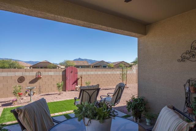 14037 E Via Cerro Del Molino E, Vail, AZ 85641 (#21830117) :: The Josh Berkley Team