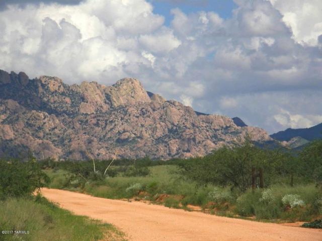 Lot 72 E Tom Jeffords Drive #72, St. David, AZ 85630 (#21830119) :: Long Realty Company