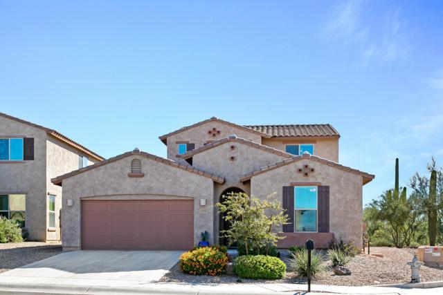 12532 N Summer Wind Drive, Marana, AZ 85658 (#21830123) :: Long Realty Company