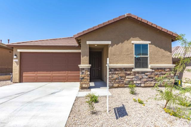 17146 S Emerald Vista Drive, Vail, AZ 85641 (#21830213) :: RJ Homes Team