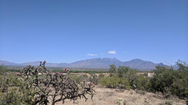 848 W Camino Encanto #2, Green Valley, AZ 85622 (#21830239) :: Long Realty Company