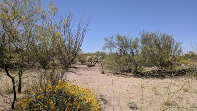 818 W Camino Encanto #3, Green Valley, AZ 85622 (#21830240) :: Long Realty Company