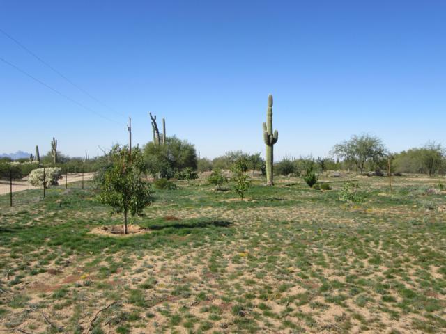 XX E Staghorn Lane 2.5 Ac, Marana, AZ 85658 (#21830294) :: Long Realty Company
