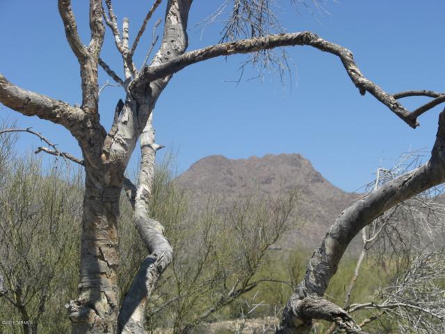4528 W Butterfly Mountain Drive #1, Marana, AZ 85658 (#21830295) :: RJ Homes Team