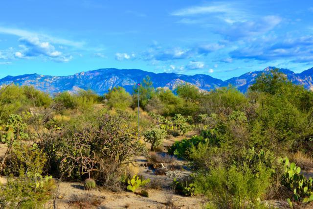 899 Tortolita Mountain Circle #131, Oro Valley, AZ 85755 (#21830382) :: RJ Homes Team