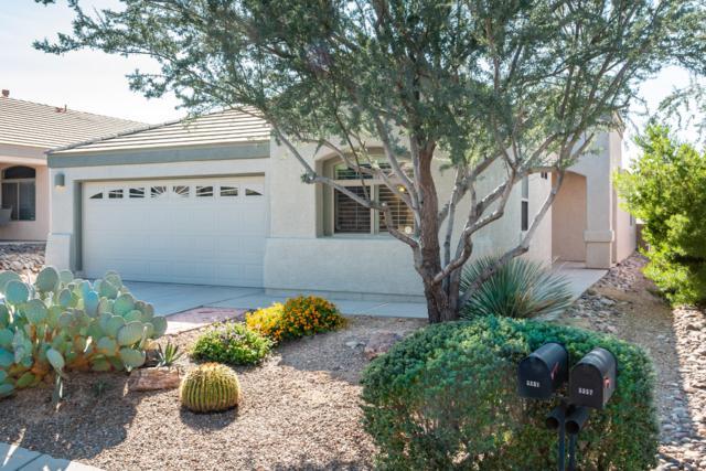 5351 W Eagle Claws Court, Marana, AZ 85658 (#21830545) :: RJ Homes Team