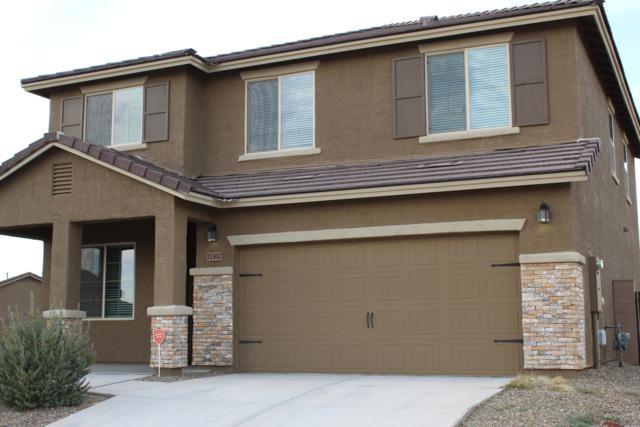 11302 W Rock Art Drive, Marana, AZ 85658 (#21830985) :: Long Realty Company