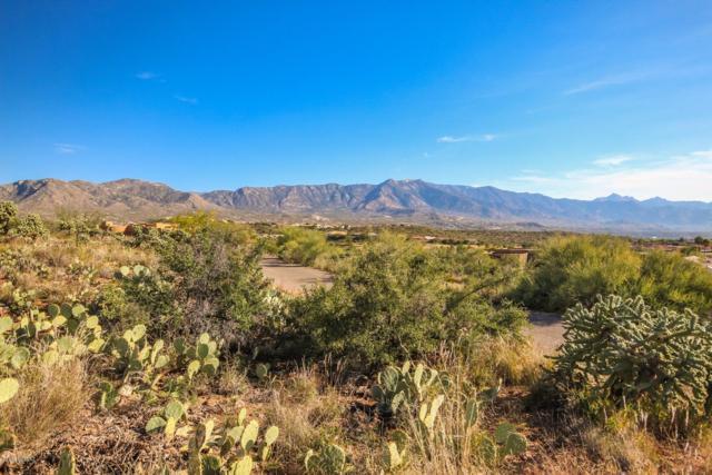 000 E Calle Rosa Linda, Saddlebrooke, AZ 85739 (#21831007) :: Gateway Partners at Realty Executives Tucson Elite