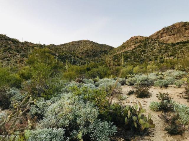 14703 N Granite Peak Place #269, Oro Valley, AZ 85755 (#21831016) :: Long Realty Company