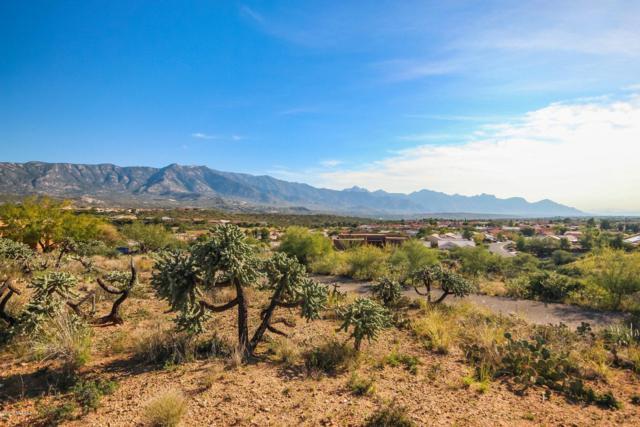 00 E Calle Rosa Linda, Saddlebrooke, AZ 85739 (#21831046) :: Gateway Partners at Realty Executives Tucson Elite