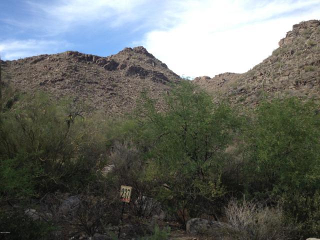 13769 N Cactus Valley Court #237, Marana, AZ 85658 (#21831125) :: Long Realty Company