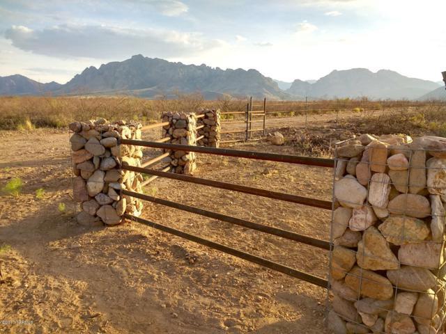 00 S Desert Willow Road #1, Portal, AZ 85632 (#21831275) :: RJ Homes Team