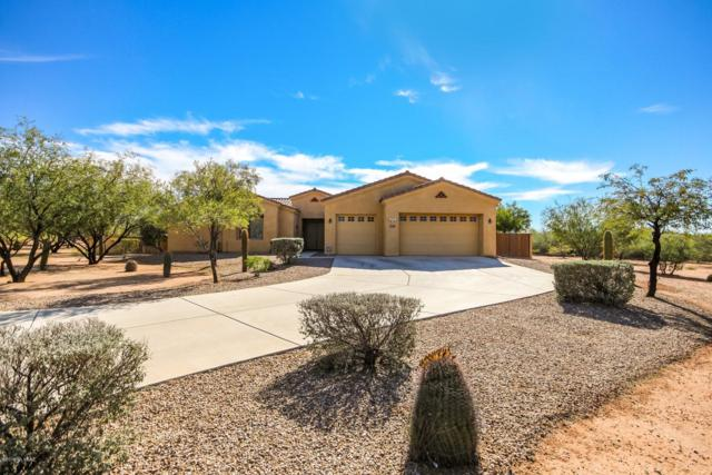12911 W Zebra Aloe Place, Tucson, AZ 85743 (#21831329) :: Long Realty - The Vallee Gold Team