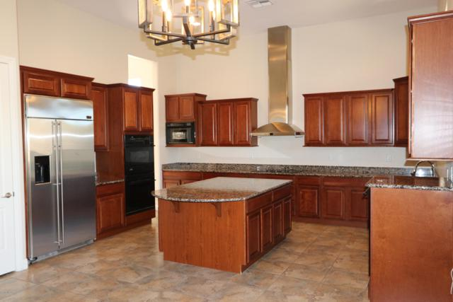 13675 N Napoli Way, Oro Valley, AZ 85737 (#21831600) :: Long Realty - The Vallee Gold Team