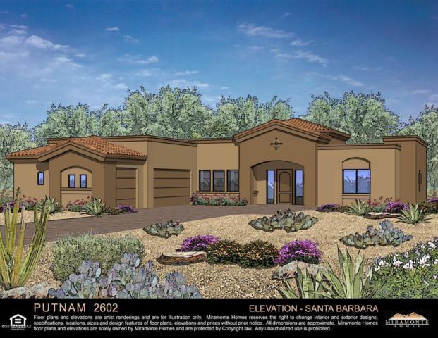 6689 W Ironwood Place, Marana, AZ 85658 (#21831713) :: Long Realty Company