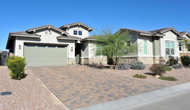 14171 Hidden Arroyo Pass, Marana, AZ 85658 (#21831783) :: Long Realty Company
