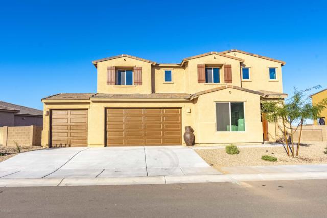 12345 N Sandby Green Drive, Marana, AZ 85653 (#21831870) :: The Josh Berkley Team