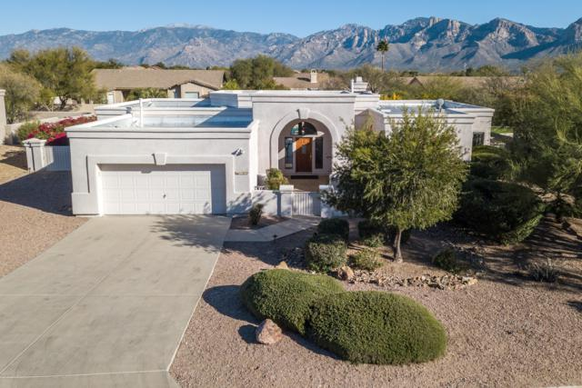 11272 N Meadow Sage Drive, Oro Valley, AZ 85737 (#21831983) :: Long Realty - The Vallee Gold Team