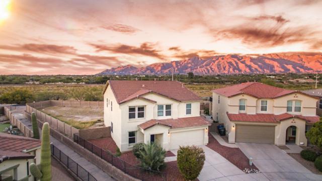 4149 E Sapphire Falls Drive, Tucson, AZ 85712 (#21832018) :: The KMS Team