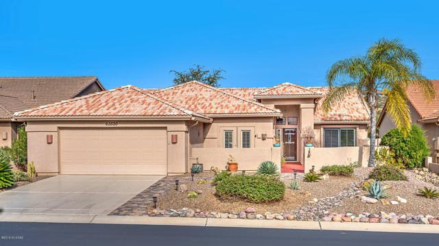 63530 E Desert Peak Drive, Tucson, AZ 85739 (#21832027) :: RJ Homes Team