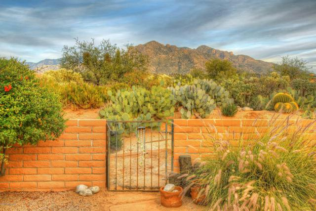 8540 N Coral Ridge Loop, Tucson, AZ 85704 (#21832077) :: The KMS Team